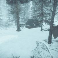 Kona: le nouveau jeu vidéo de survie dans le Nord-du-Québec!