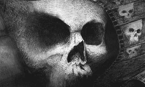 the book of fear skull cover image