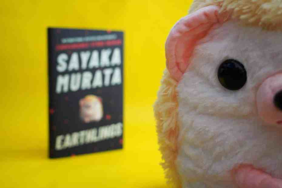 Earthlings book and hedgehog in foreground