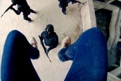 """""""Blut schlucken und schlucken lassen"""" - Stehaufmännchen Henry macht seine Gegner platt. © capelight pictures"""