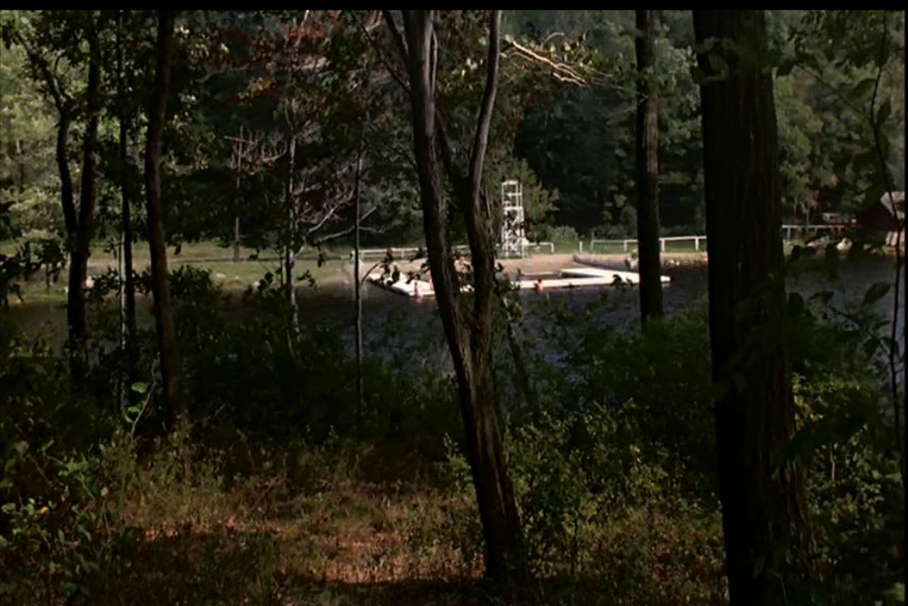 Fig. 1. Friday the 13th (1980)