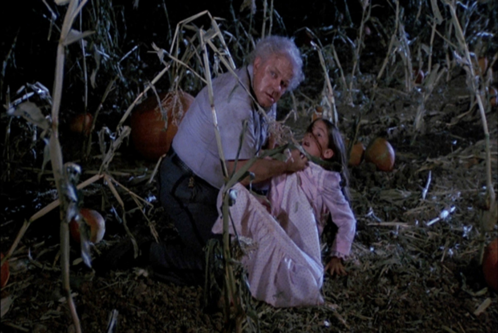 dark-night-of-the-scarecrow-1981