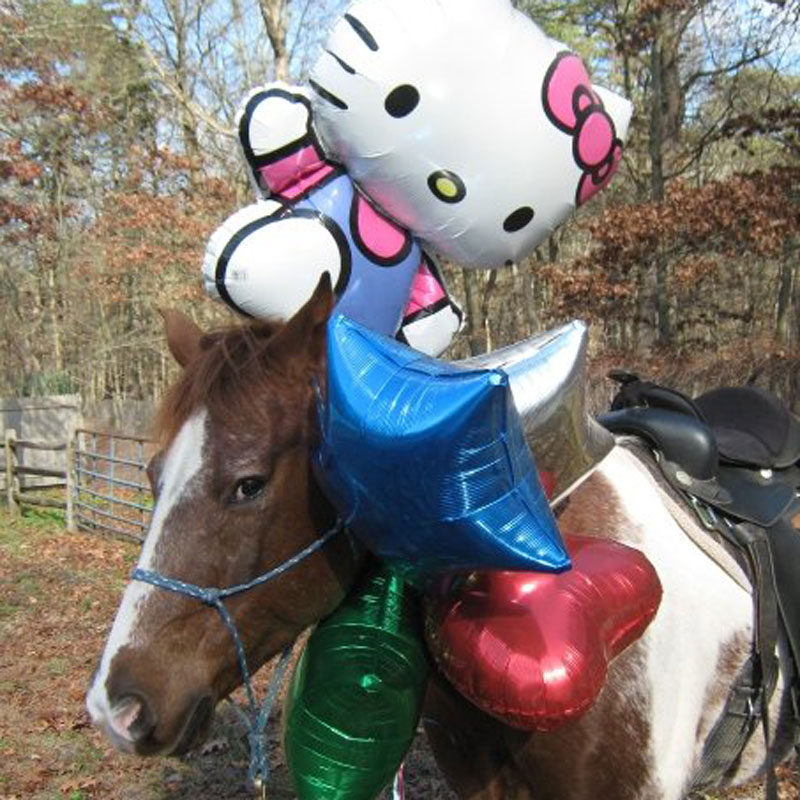 Pony Party with Balloons