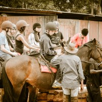 Equine Educational Programme - Getting ready for riding