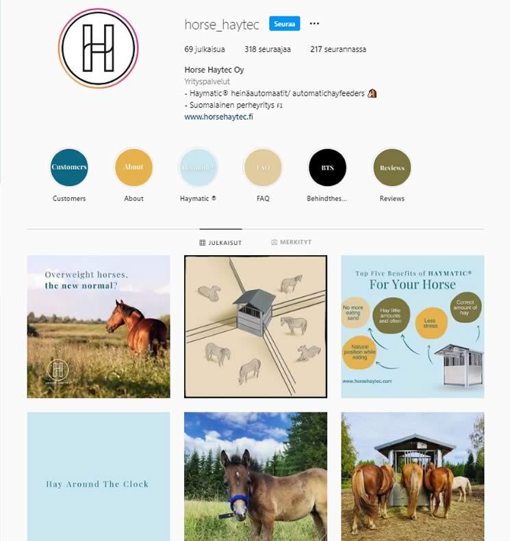 instagram horse haytec