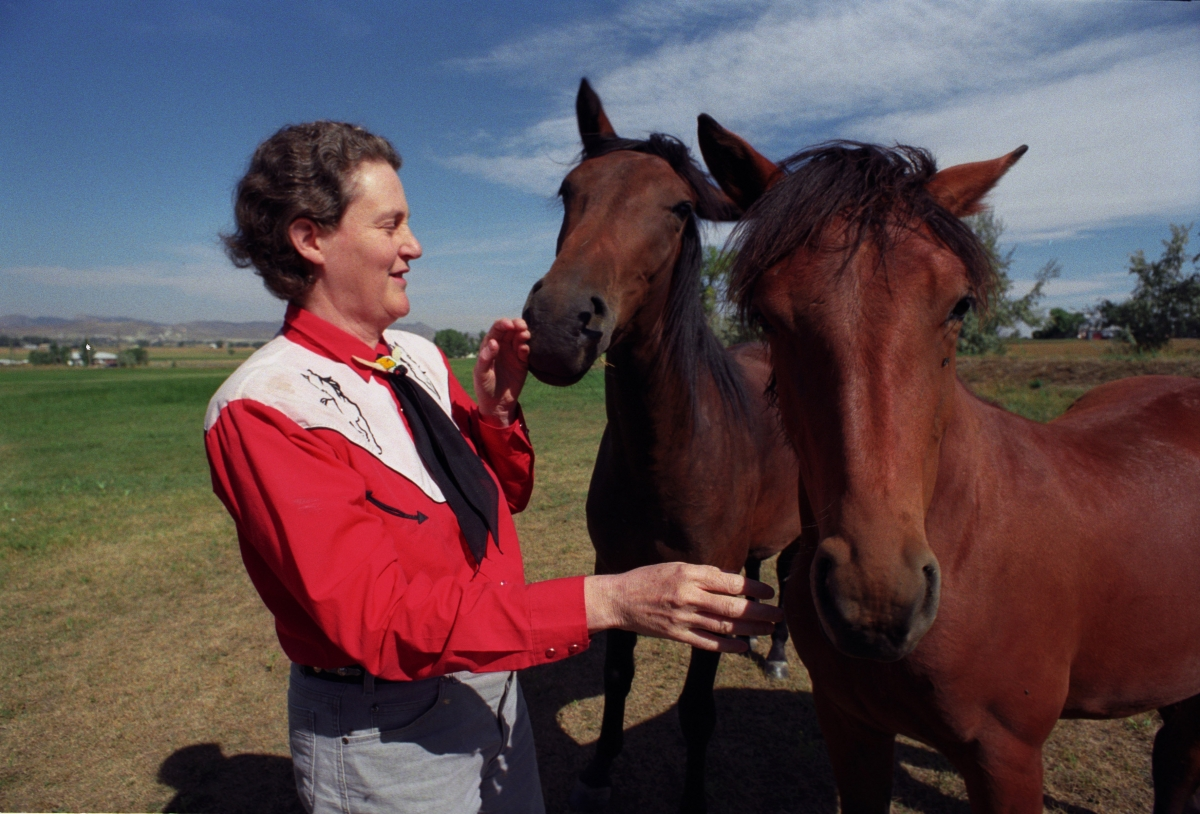 Temple Grandin and horses