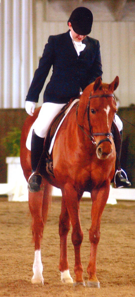 Is Dressage Judging All That Bad?