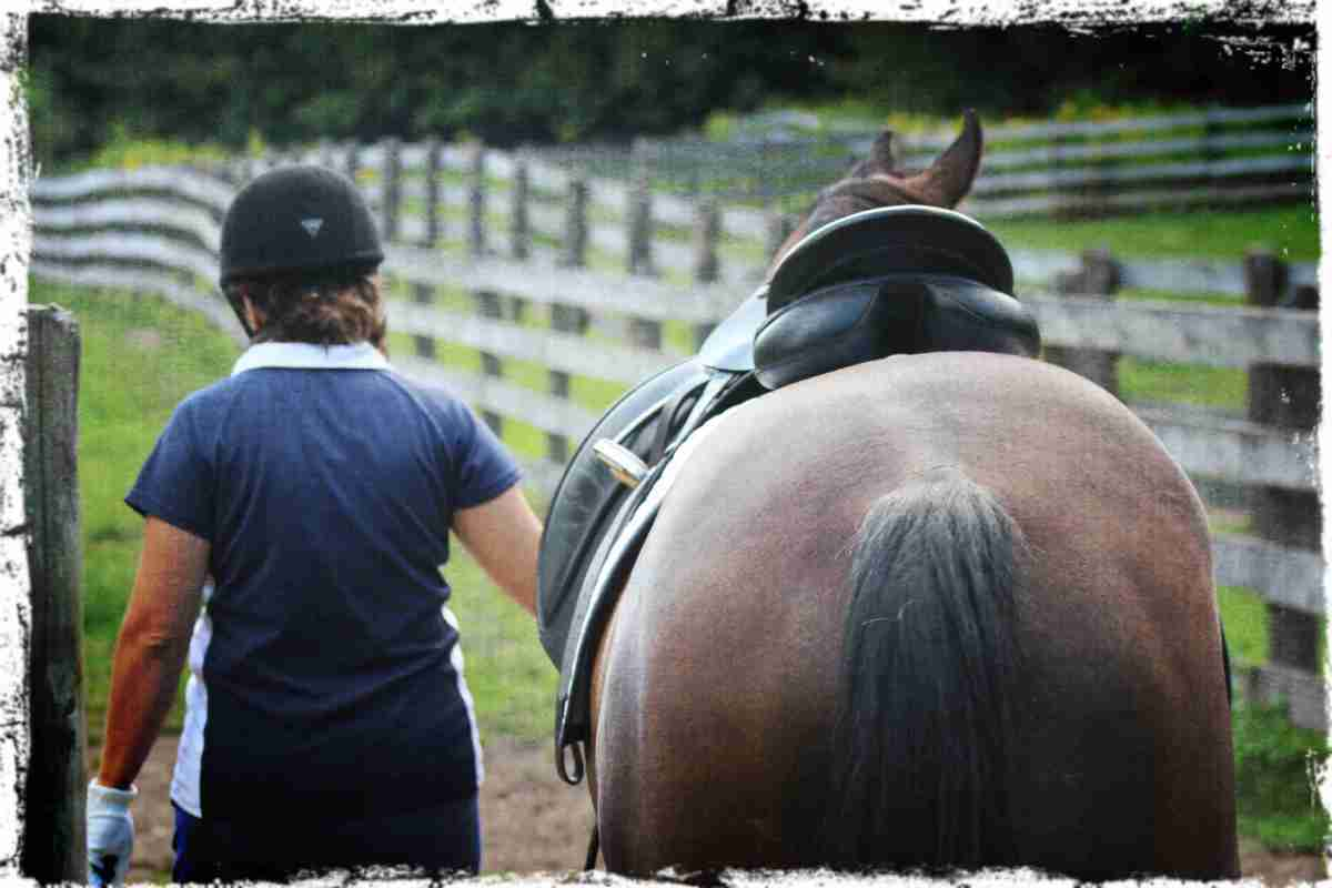 Top 10 Ways to Be A Star (Horse Riding) Student
