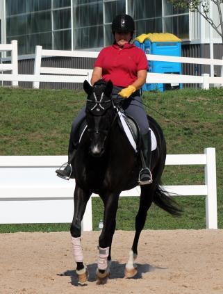 align upper body horseback riding