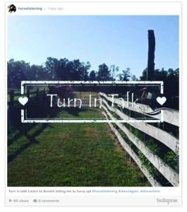 Turn in Talk video horses