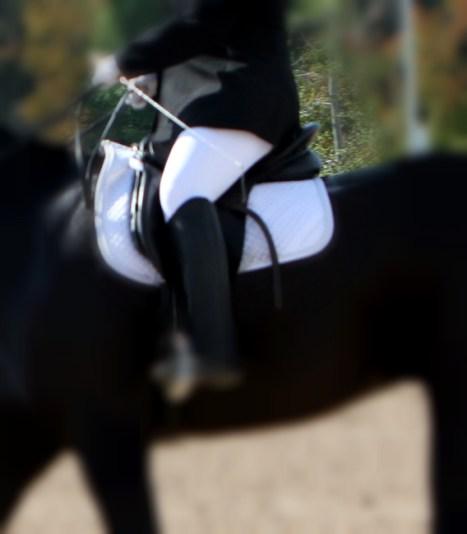 horseback riding seat