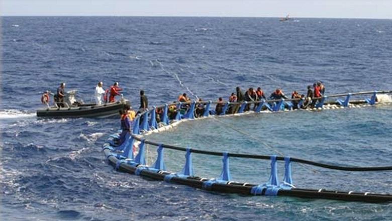 20130617-immigrazione-illegale_780x440