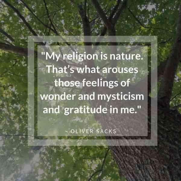 My Religion is Nature Oliver Sacks Quote | Horseradish & Honey