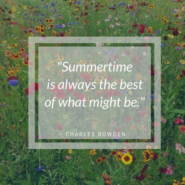 Summertime Quote | Horseradish & Honey
