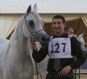 D'aajaa Al Naif mares 4-6win-7454