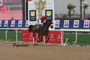 Fryvolous wins  2009 Dubai Kahayla Classic  photo Pamela Burton
