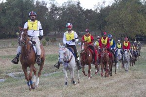 HH Sheikh Mohammed leads UAE team in Kentucky World Equestrian Games Endurance (2010)