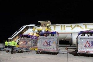 Etihad horse transport from Abu Dhabi