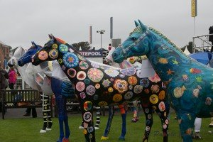 Painted horses with raincoats-0860
