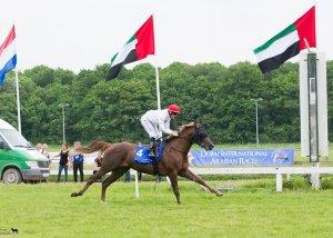 FAJR QARDABIYAH - Mullen in the saddle