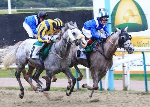 Emiraaty winning on rail mhf_4563