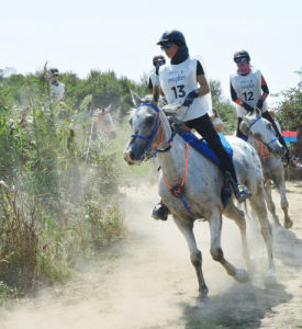 Sanchez leads Spanish team to Gold Photo: FEI/Endurance in the World)