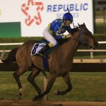 Paddys Day winning Zayed Cup Grade 1
