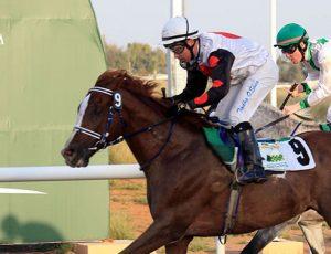 O'Shea winning at Al Ain (file photo 2017)
