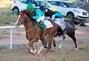 Tadhg O'Shea wins on Inthar