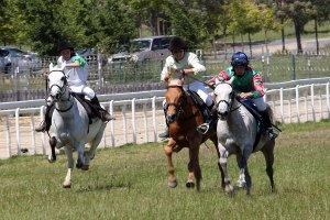 Pony races 2017