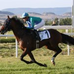 Akoya winning the Sheikh Zayed Cup in Italy