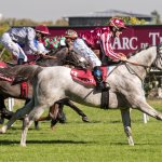 MARID Winning QATAR ARABIAN TROPHY DES POULAINS at Saint Cloud Race course_3.jpg