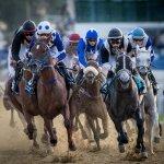 Racing down the straight -Photo Juhaim