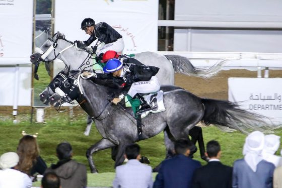 AF MOTAGHATRES WINS WATHBA PRIVATE OWNERS RACE