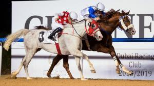 AS Ajeeb (chestnut) wins at Meydan - file photo