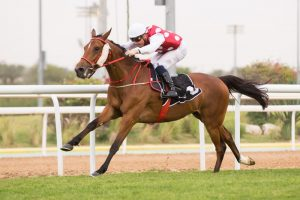 Basmah, winner Group 3 Arabian Triple Crown R3