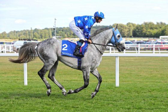 Gazwan Wins at Newbury 2019
