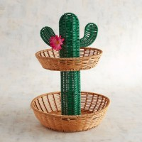 12 Cactus Accessories for the Home