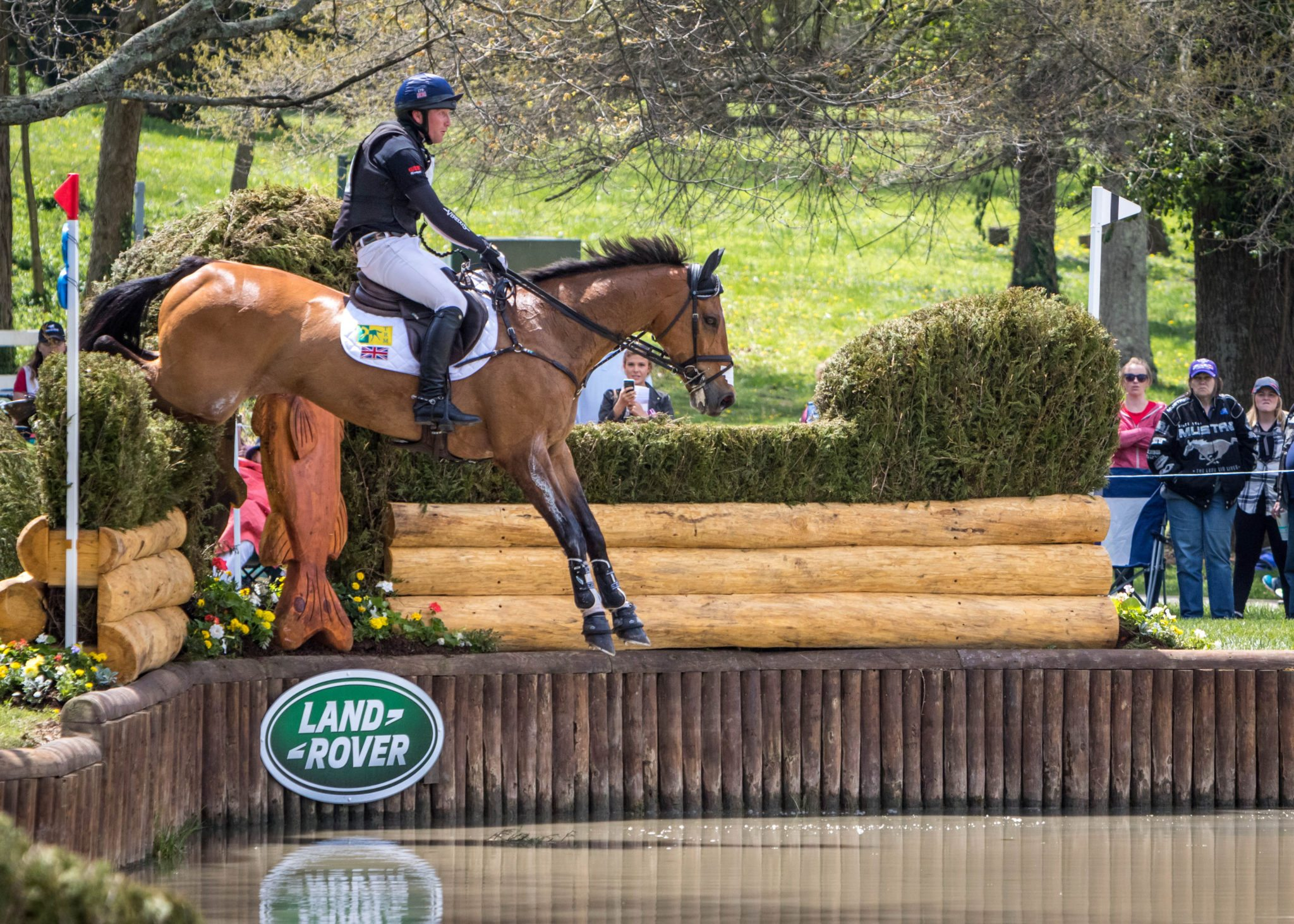 Image result for cooley master class