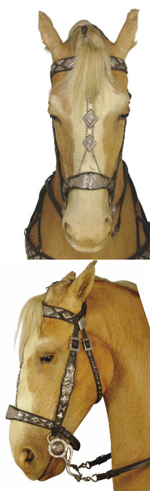 Trigger's bridle, which is being auctioned with his parade saddle.