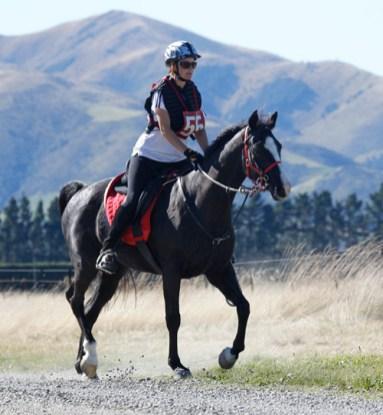NZ-endurance-champs8415