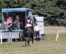 NZ-endurance-champs8430