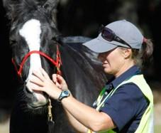 NZ-endurance-champs8466