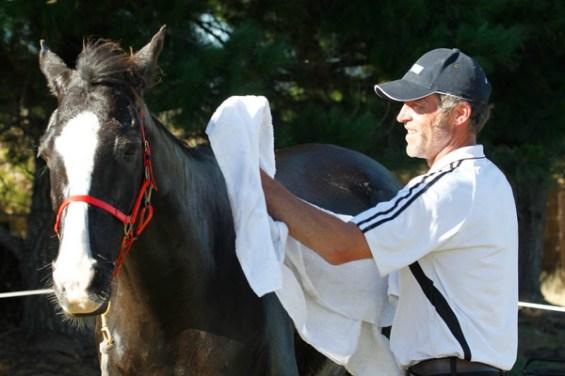 NZ-endurance-champs8476