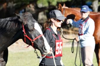 NZ-endurance-champs8598