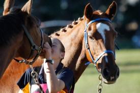 NZ-endurance-champs8697