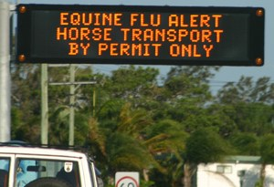 A traffic alert during the 2007 equine influenza outbreak in Australia. The disease was successfully eradicated from the country.