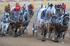 Chuckwagon racing at the Calgary Stampede.