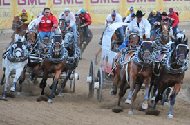 Chuckwagon racing at the Calgary Stampede.