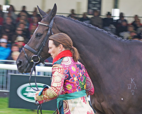 Granntevka Prince and Lucy Wiegersma at the 2012 Burghley Horse Trials.